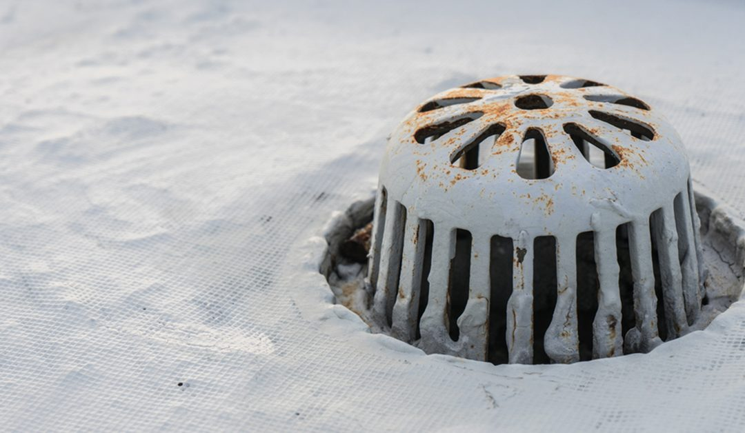 commercial roof drain